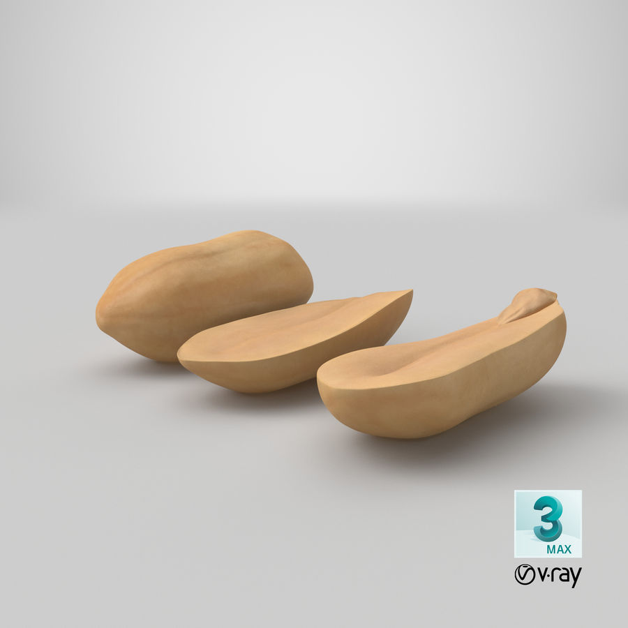 Peanut Seeds Peeled royalty-free 3d model - Preview no. 44