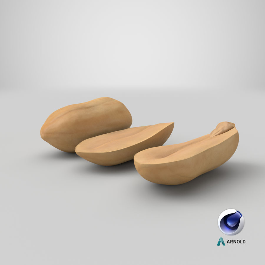 Peanut Seeds Peeled royalty-free 3d model - Preview no. 41