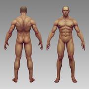 corps humain 3d model