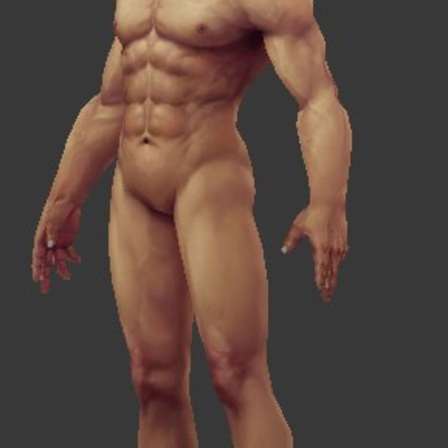 人体 royalty-free 3d model - Preview no. 3