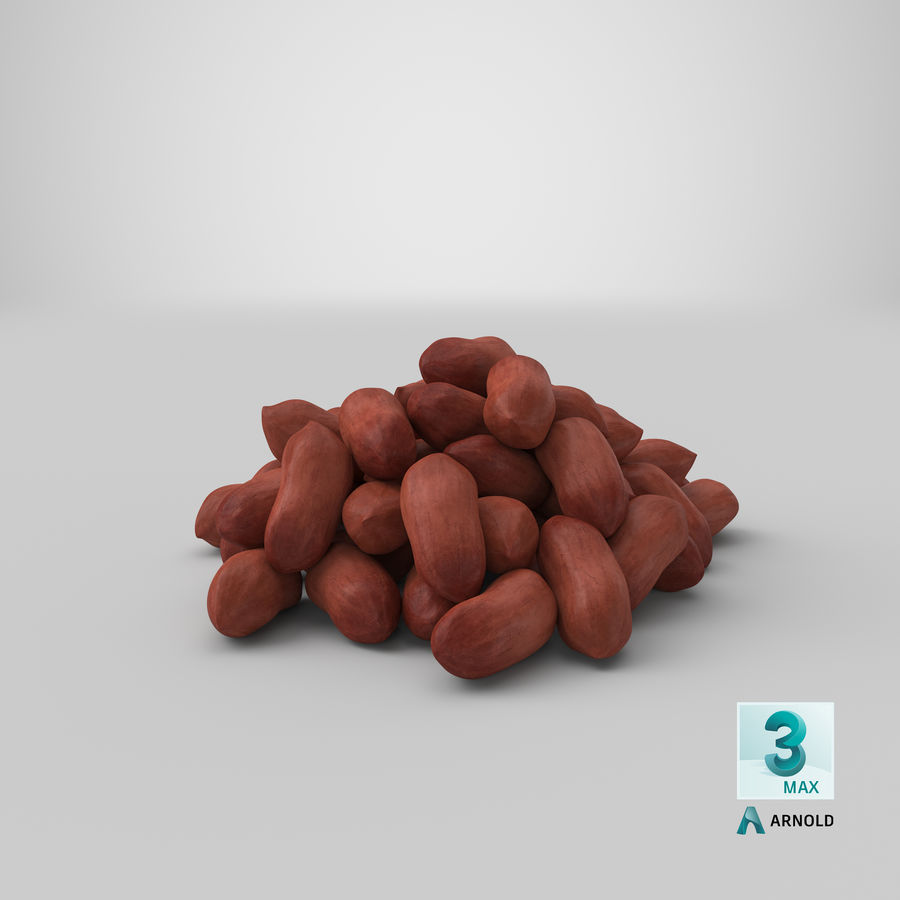 Peanuts Seed royalty-free 3d model - Preview no. 34