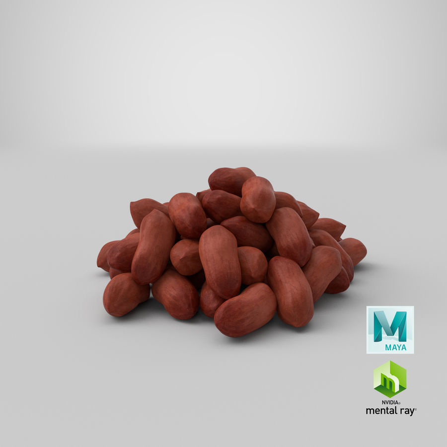 Peanuts Seed royalty-free 3d model - Preview no. 38