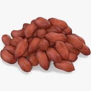 땅콩 씨앗 3d model
