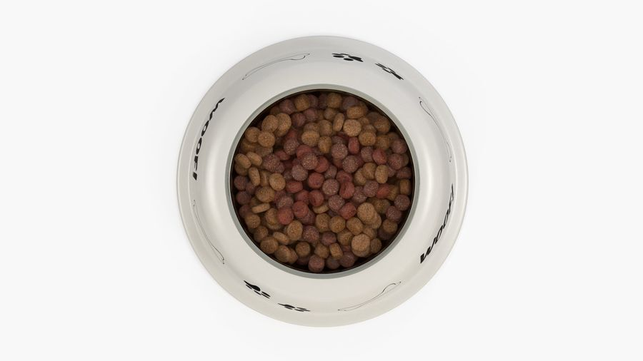 Dog Bowl with Food royalty-free 3d model - Preview no. 8