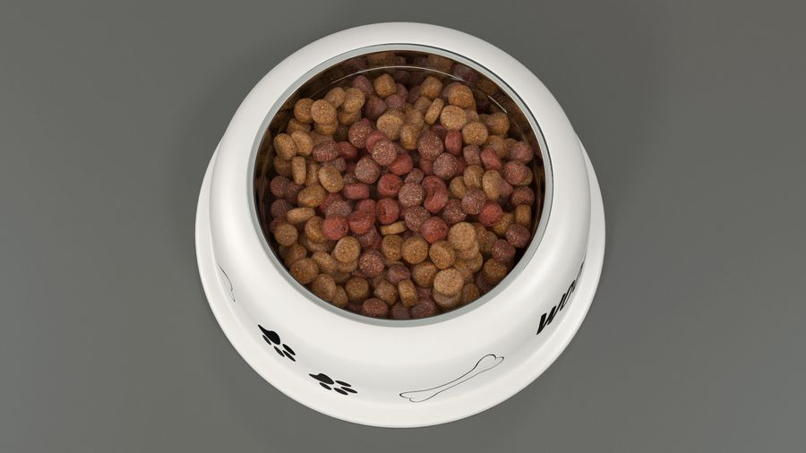 Dog Bowl with Food royalty-free 3d model - Preview no. 5