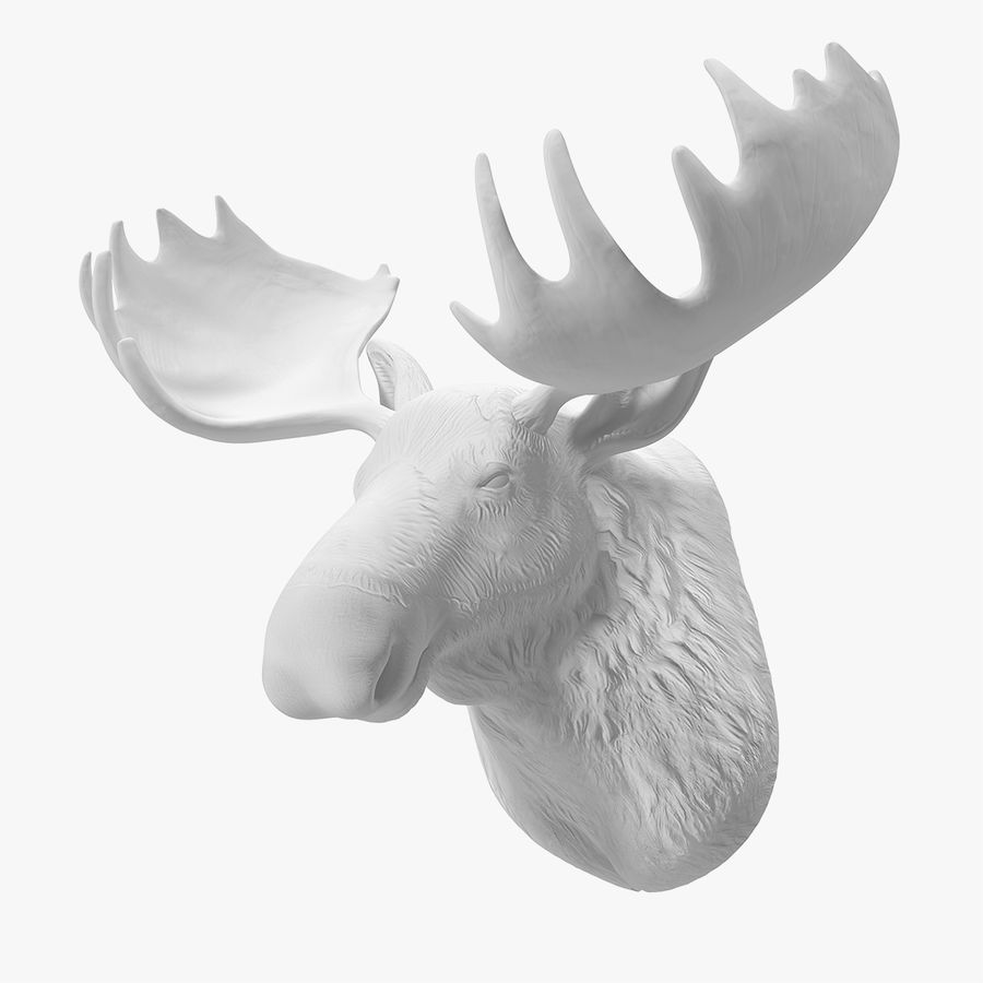 Deer Head Fake Wall Mount 3d Model 39 Max Obj Ma Fbx C4d Blend 3ds Free3d