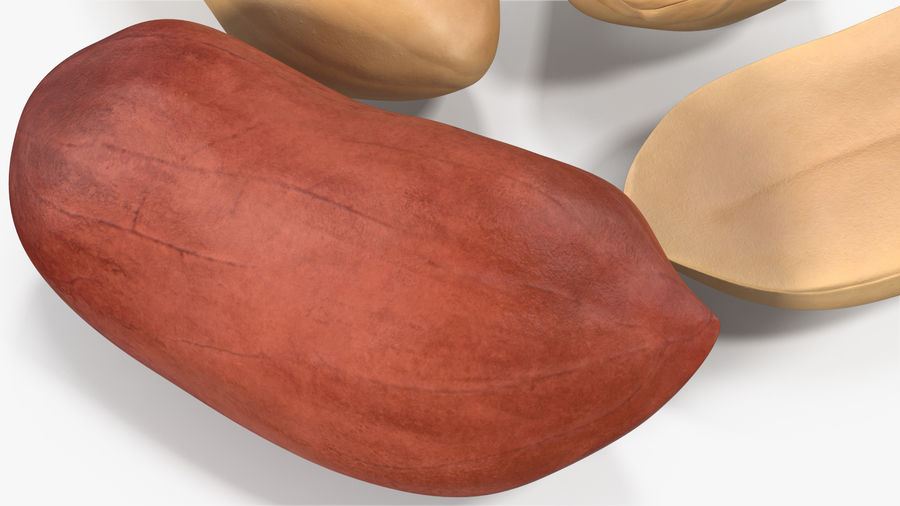 Peanut Seeds 2 royalty-free 3d model - Preview no. 8