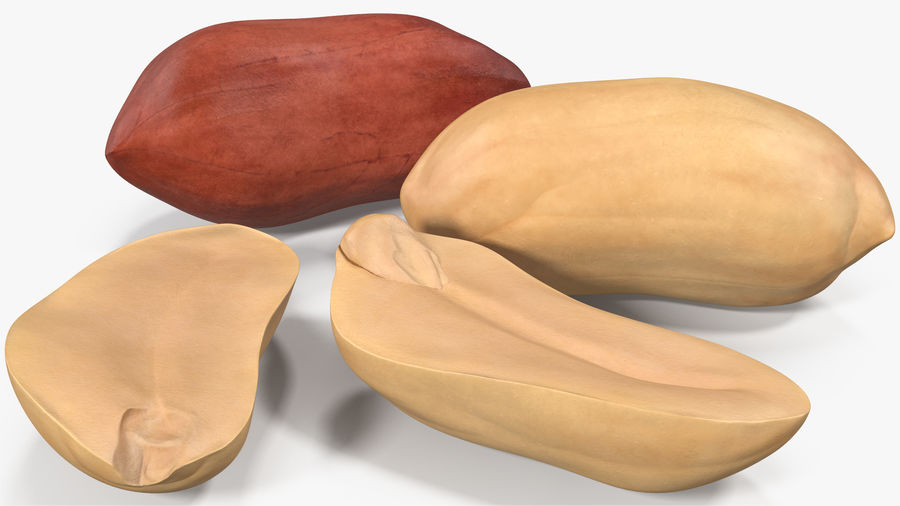 Peanut Seeds 2 royalty-free 3d model - Preview no. 3