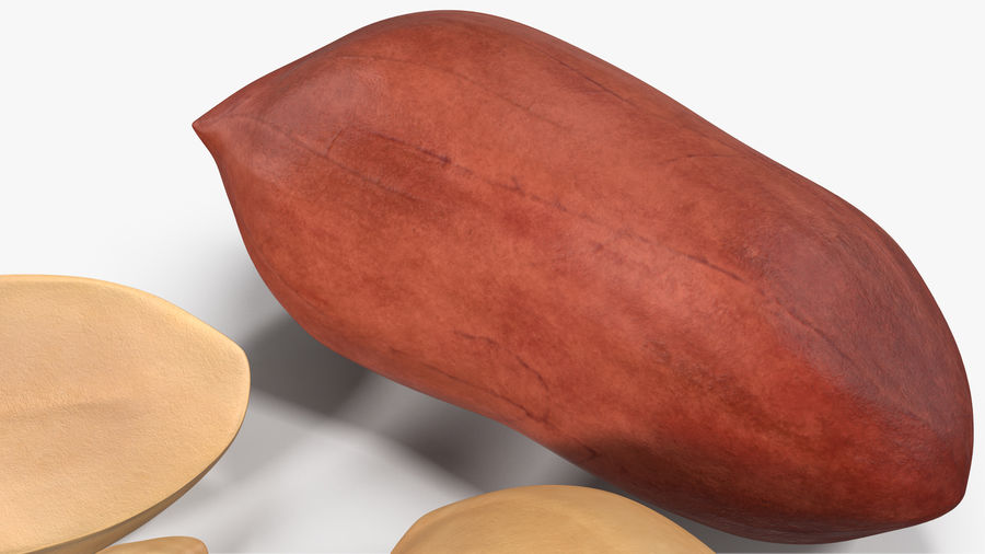Peanut Seeds 2 royalty-free 3d model - Preview no. 7
