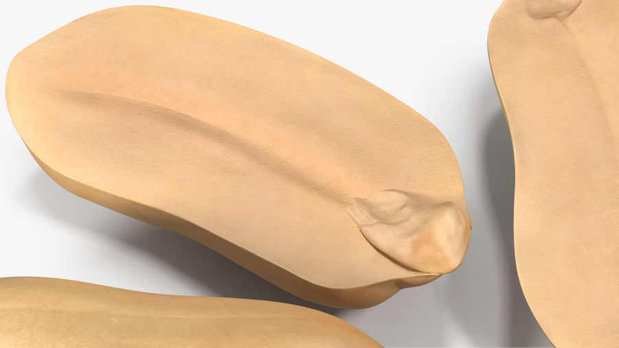 Peanut Seeds 2 royalty-free 3d model - Preview no. 14