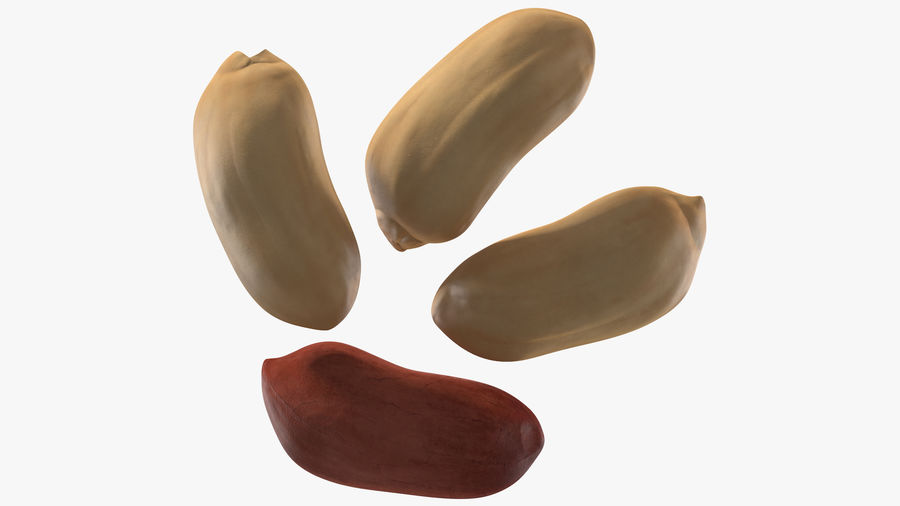 Peanut Seeds 2 royalty-free 3d model - Preview no. 15