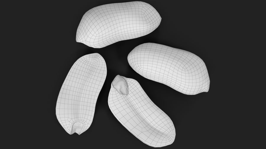 Peanut Seeds 2 royalty-free 3d model - Preview no. 39