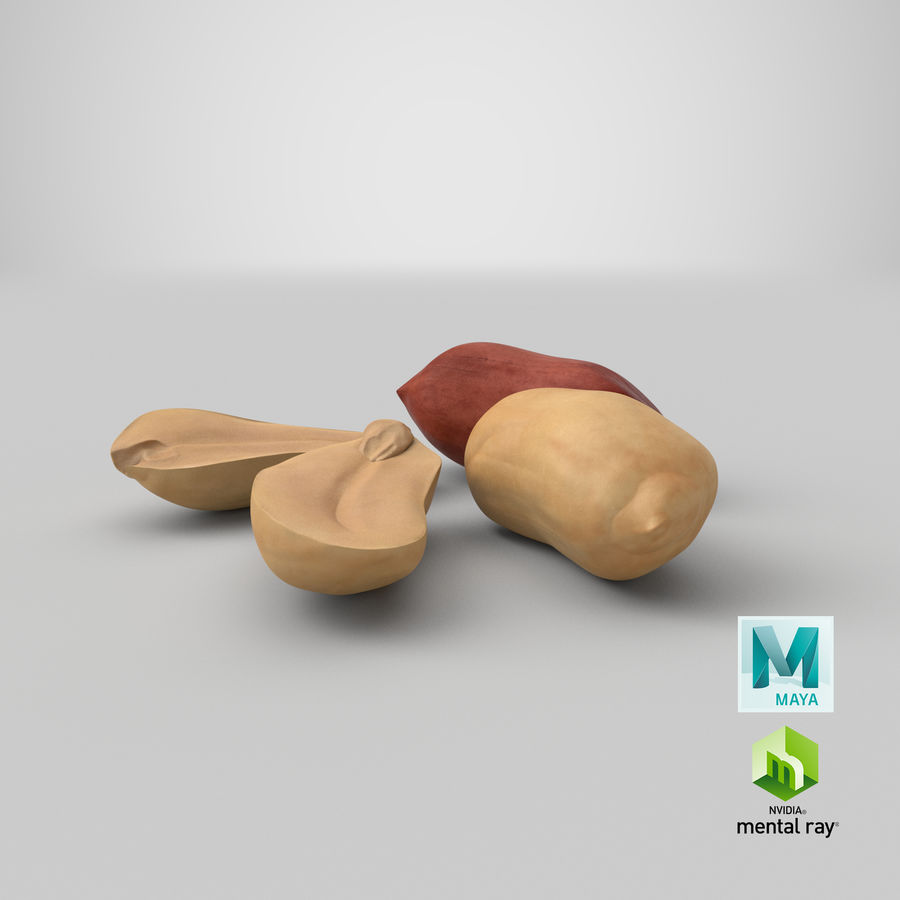 Peanut Seeds 2 royalty-free 3d model - Preview no. 50