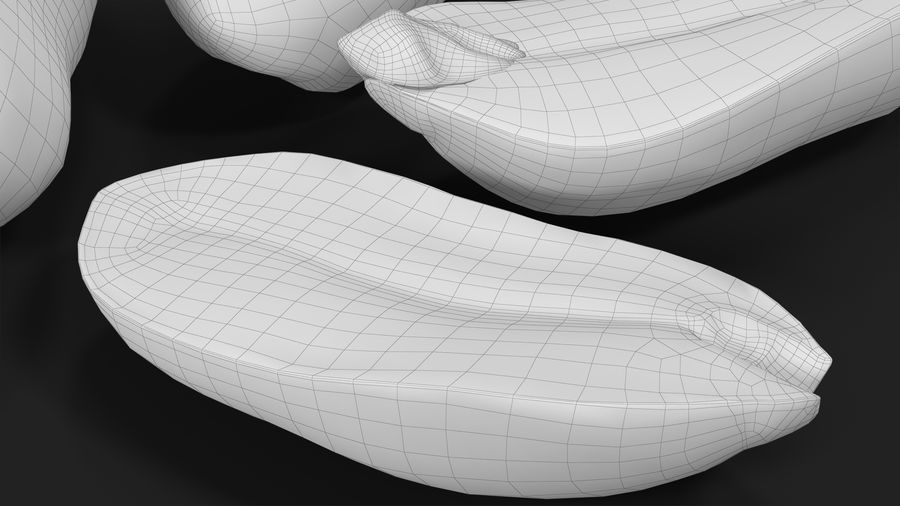 Peanut Seeds 2 royalty-free 3d model - Preview no. 34
