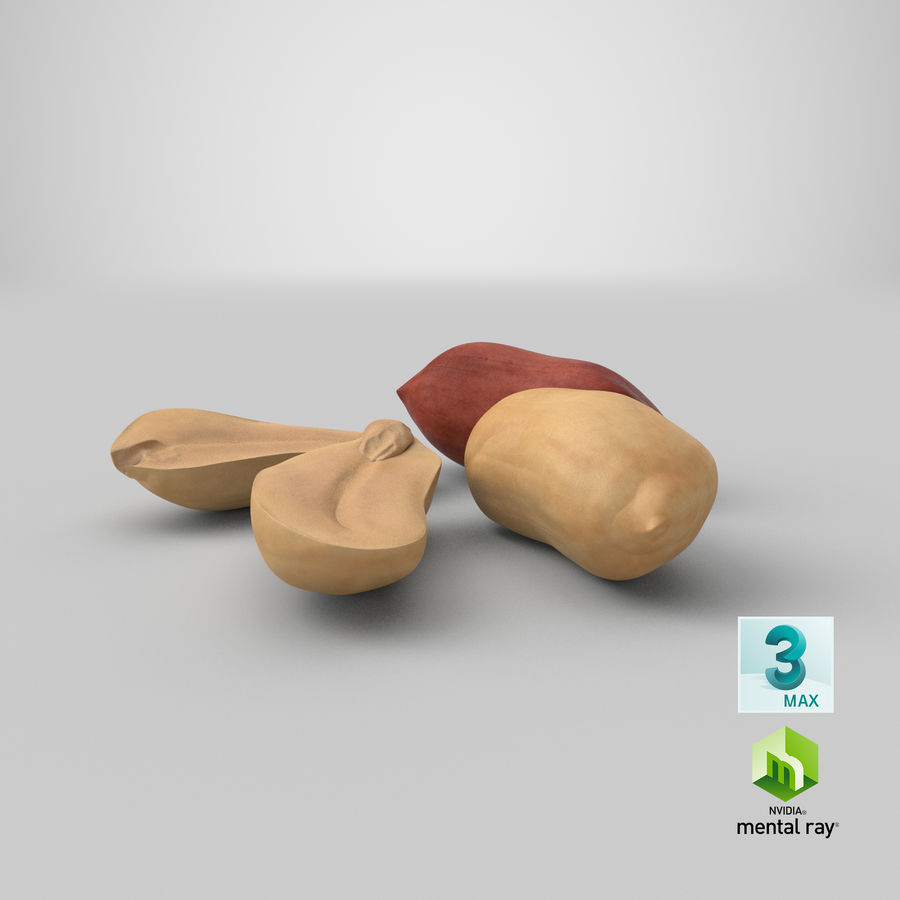 Peanut Seeds 2 royalty-free 3d model - Preview no. 47