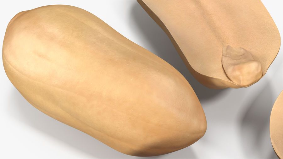 Peanut Seeds 2 royalty-free 3d model - Preview no. 10