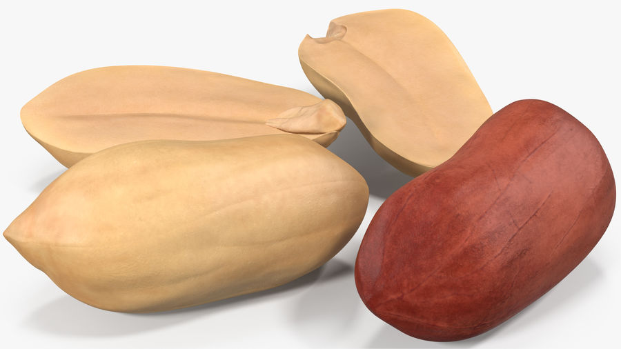 Peanut Seeds 2 royalty-free 3d model - Preview no. 5