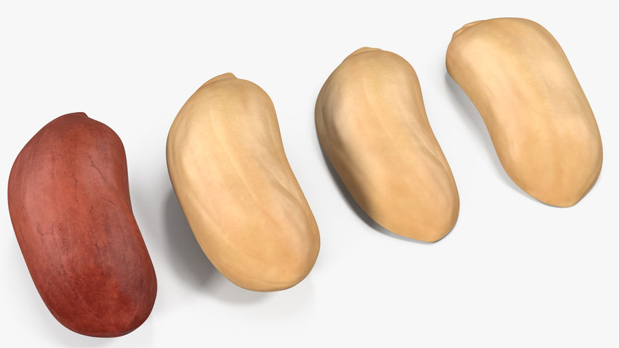 Peanut Seeds 2 royalty-free 3d model - Preview no. 18