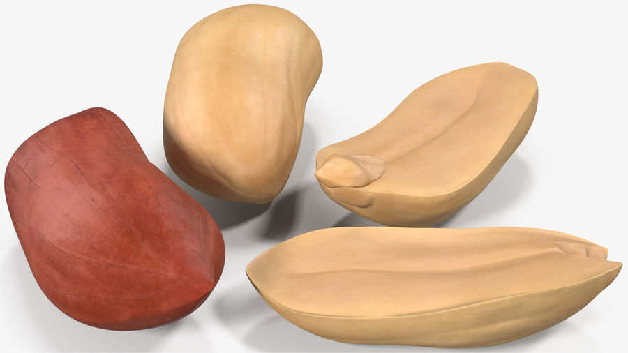 Peanut Seeds 2 royalty-free 3d model - Preview no. 4