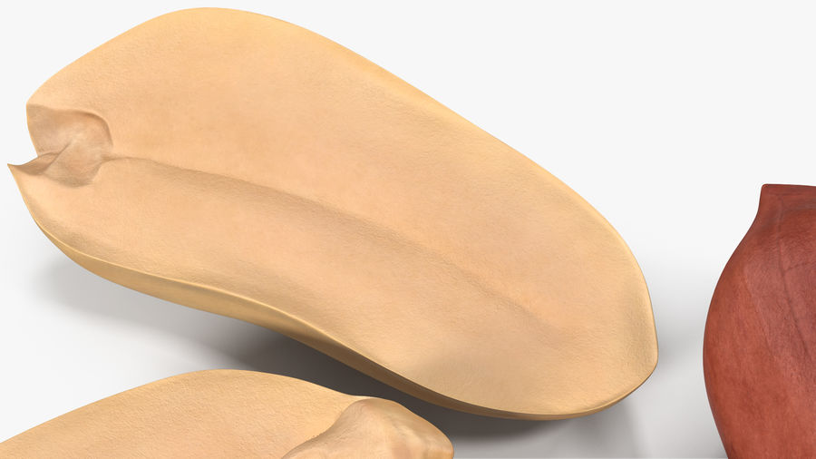 Peanut Seeds 2 royalty-free 3d model - Preview no. 12