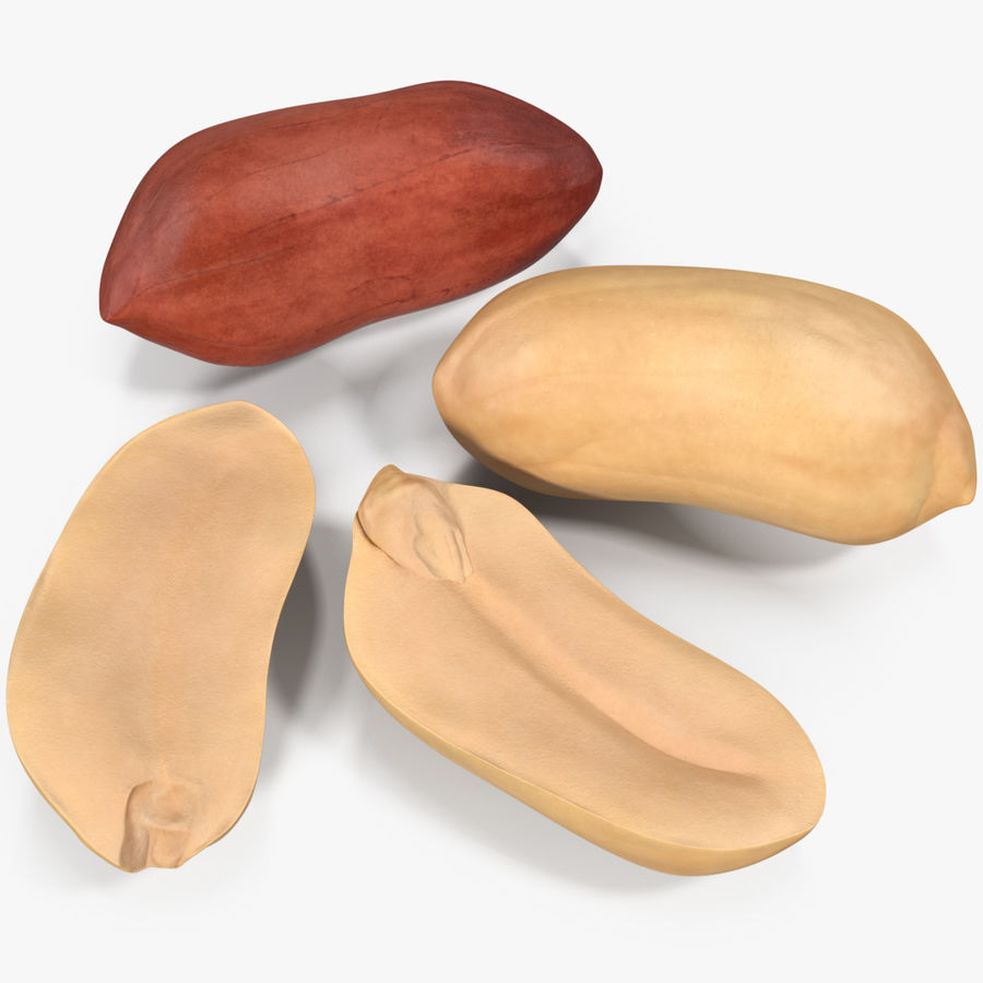 Peanut Seeds 2 royalty-free 3d model - Preview no. 1