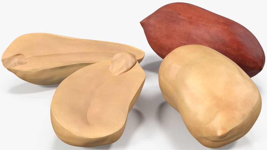 Peanut Seeds 2 royalty-free 3d model - Preview no. 6