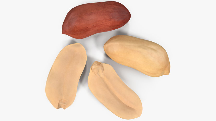 Peanut Seeds 2 royalty-free 3d model - Preview no. 16