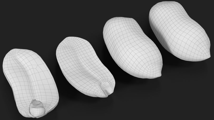 Peanut Seeds 2 royalty-free 3d model - Preview no. 42