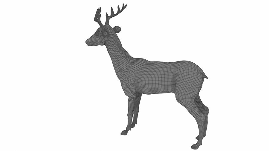 Cerf royalty-free 3d model - Preview no. 11