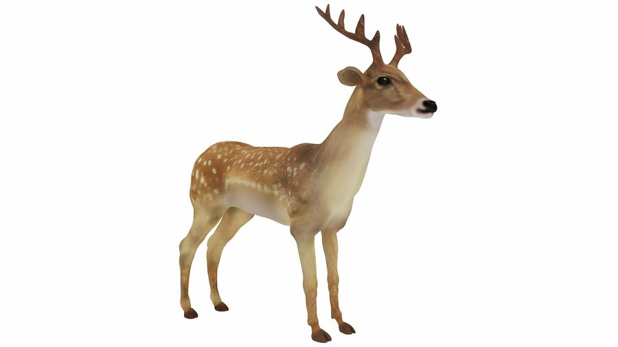 Cerf royalty-free 3d model - Preview no. 2