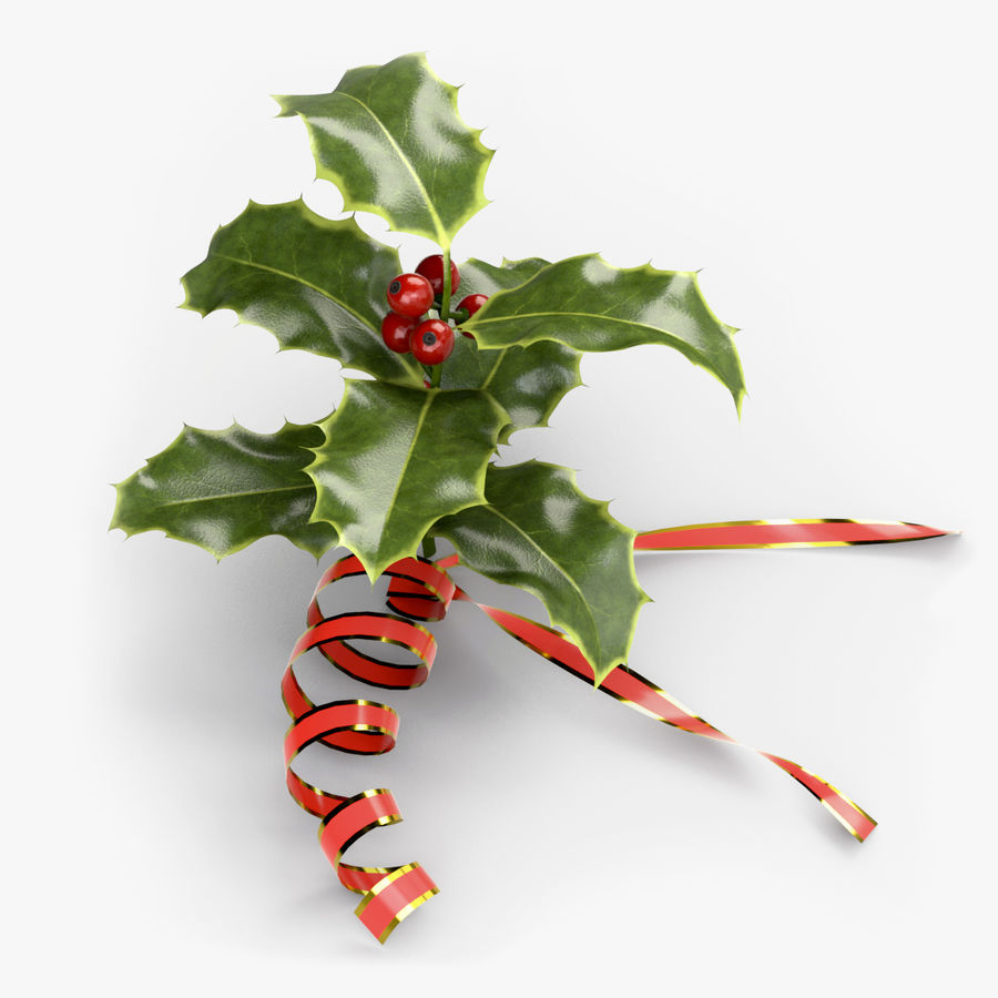 Christmas Holly royalty-free 3d model - Preview no. 1