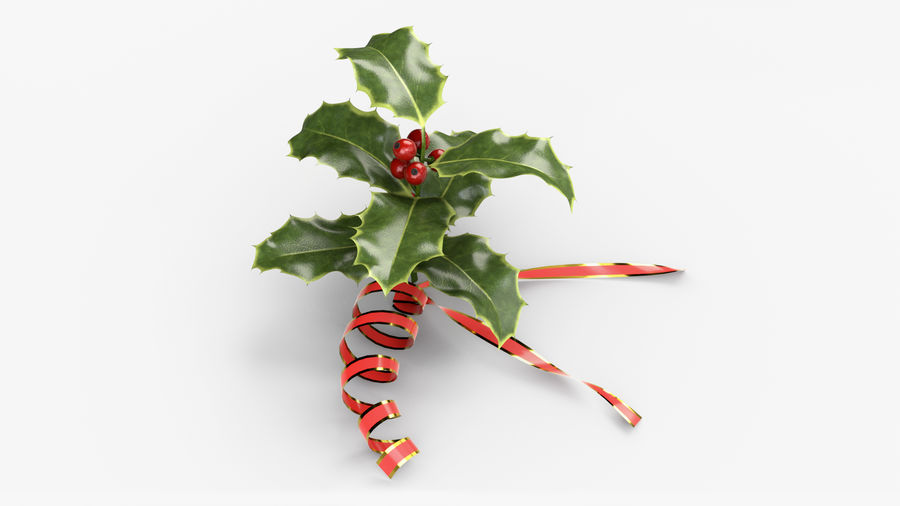 Christmas Holly royalty-free 3d model - Preview no. 3