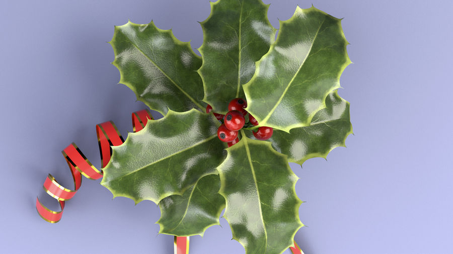 Christmas Holly royalty-free 3d model - Preview no. 6