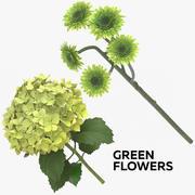 Green Flowers 3d model