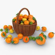 Citrus Basket 3d model