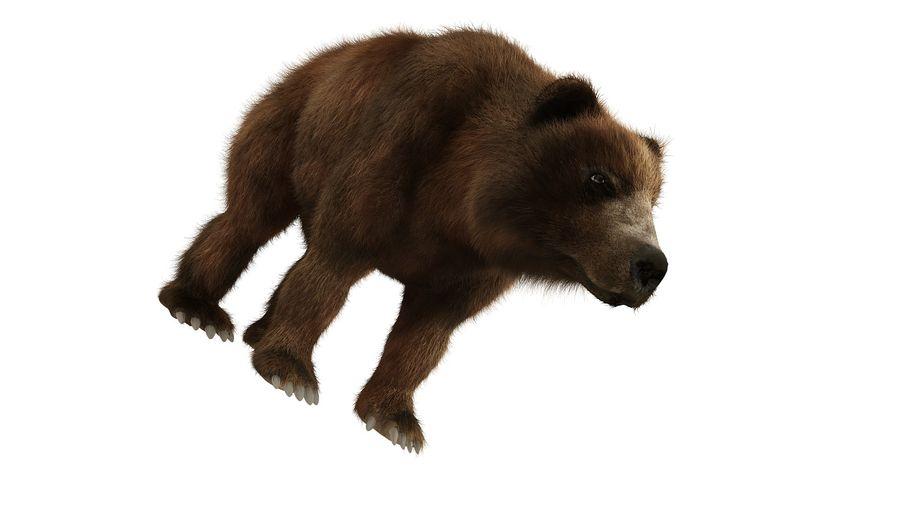 Niedźwiedź grizzly z futrem royalty-free 3d model - Preview no. 2