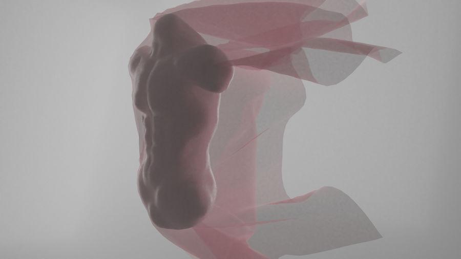 인간의 몸통 royalty-free 3d model - Preview no. 2