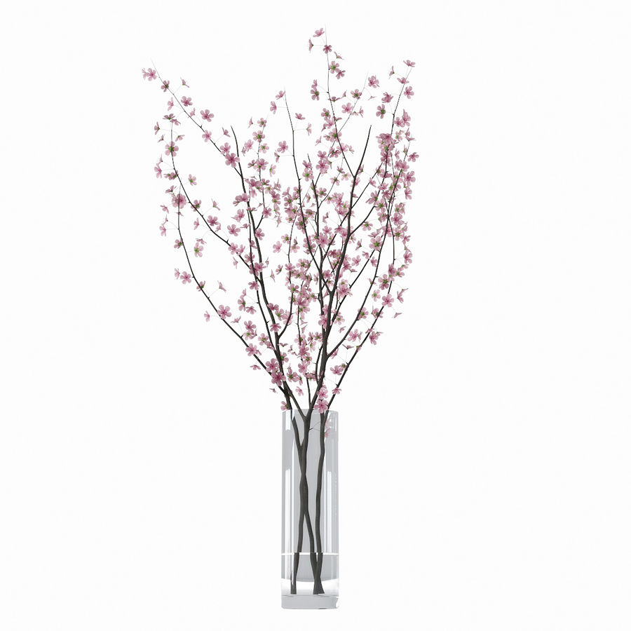 Cherry blossom royalty-free 3d model - Preview no. 5