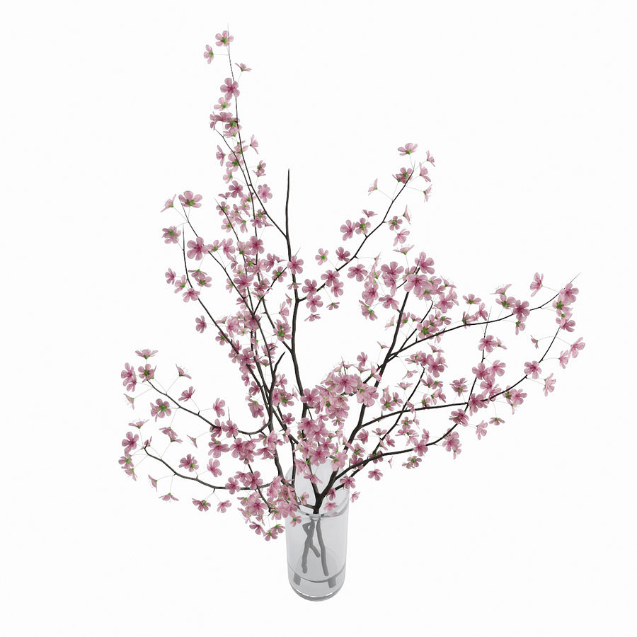 Cherry blossom royalty-free 3d model - Preview no. 9