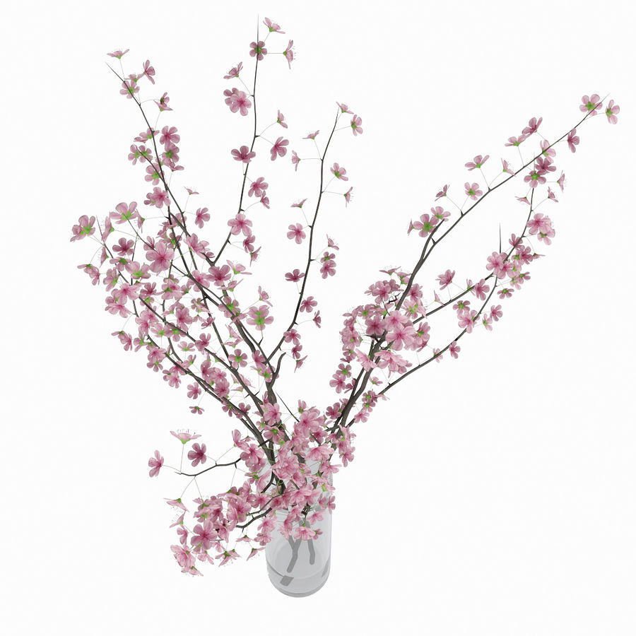 Cherry blossom royalty-free 3d model - Preview no. 11