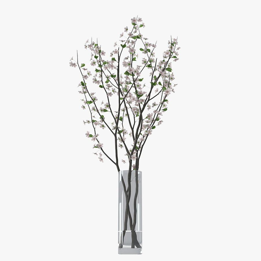 Cherry blossom 02 royalty-free 3d model - Preview no. 3