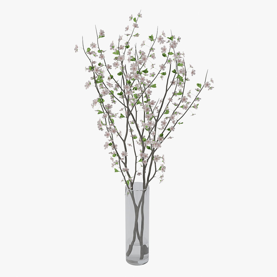 Cherry blossom 02 royalty-free 3d model - Preview no. 9