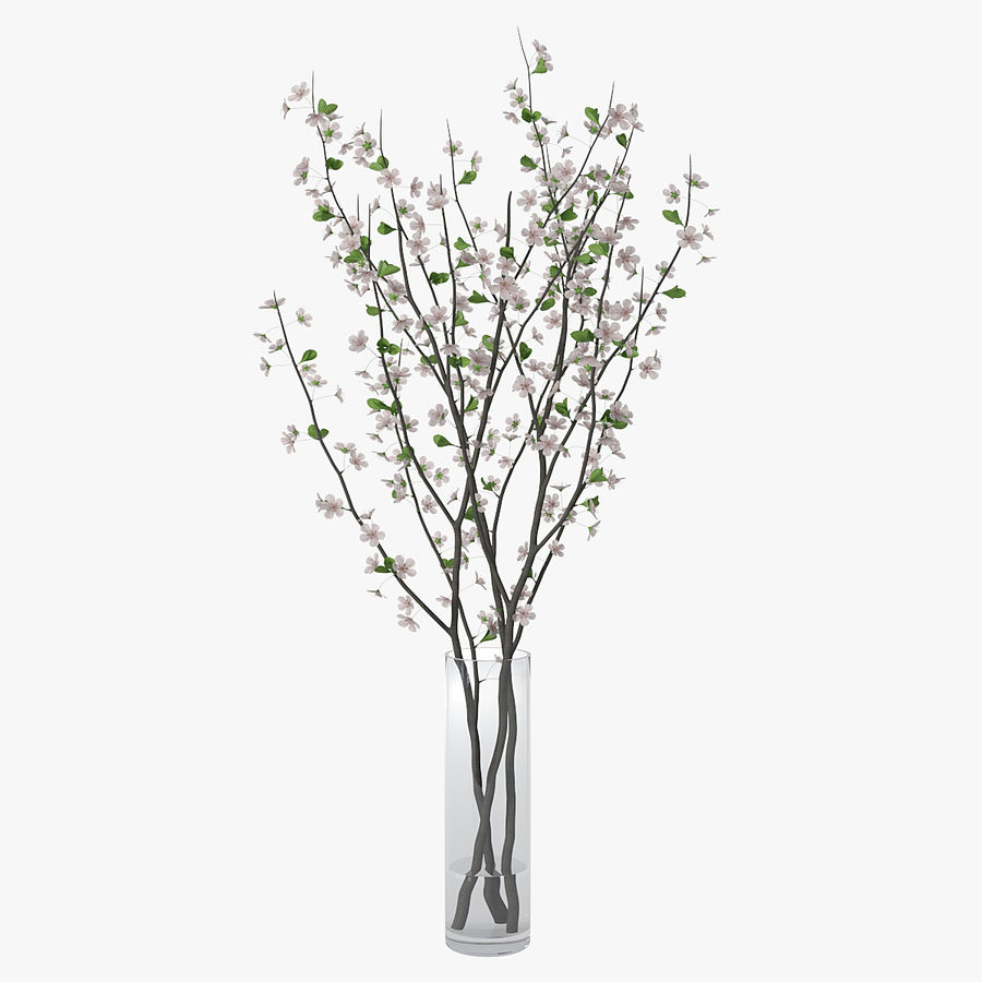 Cherry blossom 02 royalty-free 3d model - Preview no. 1