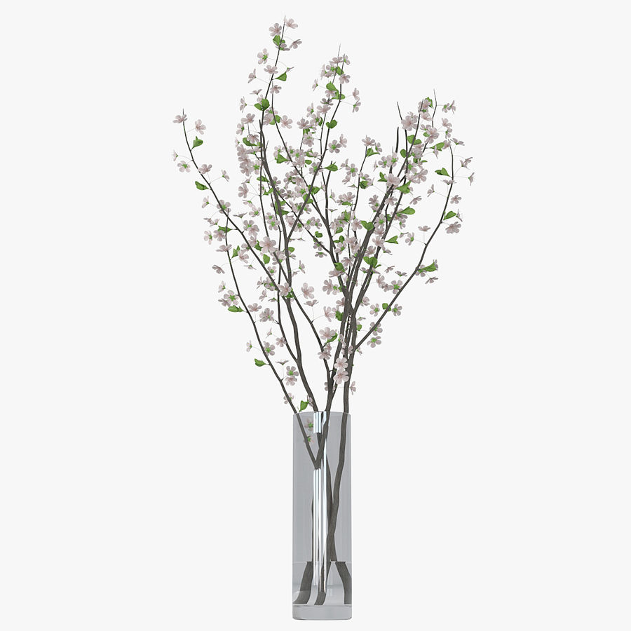 Cherry blossom 02 royalty-free 3d model - Preview no. 10
