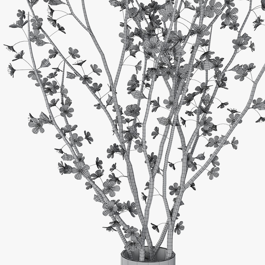 Cherry blossom 02 royalty-free 3d model - Preview no. 14