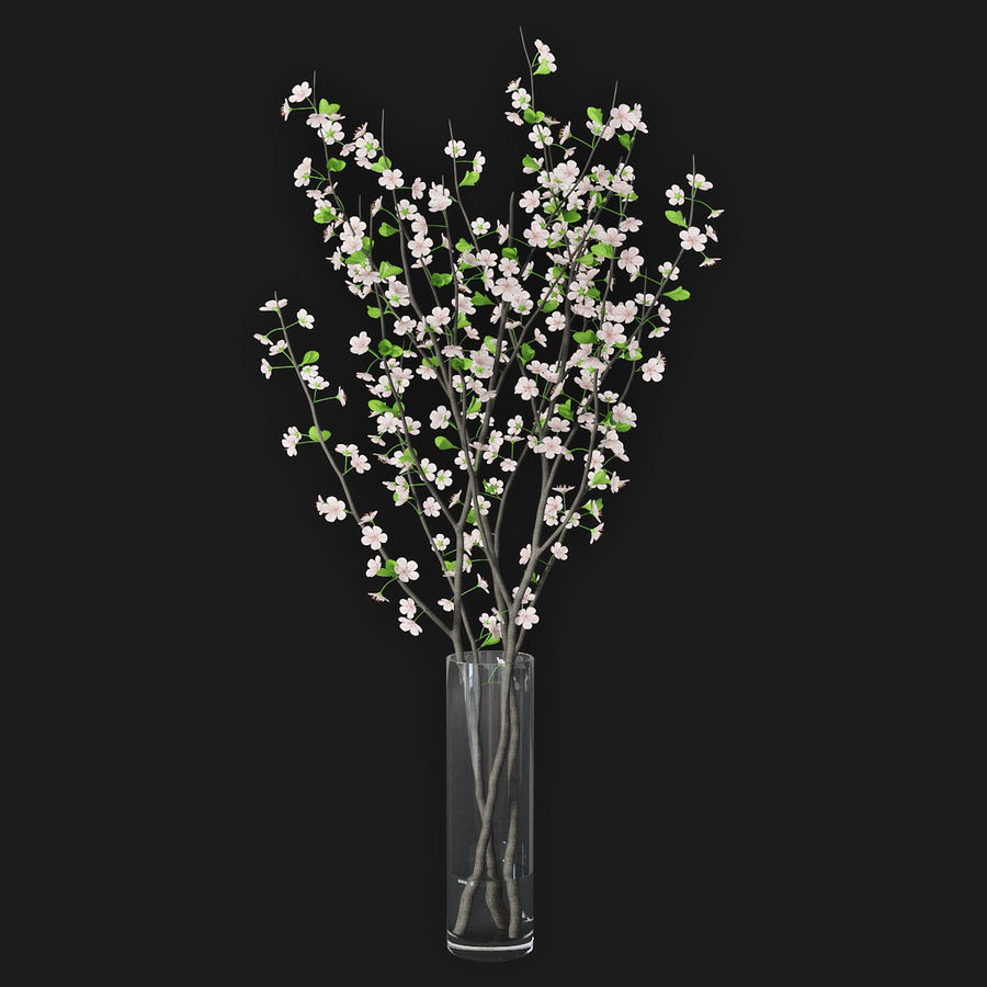 Cherry blossom 02 royalty-free 3d model - Preview no. 2