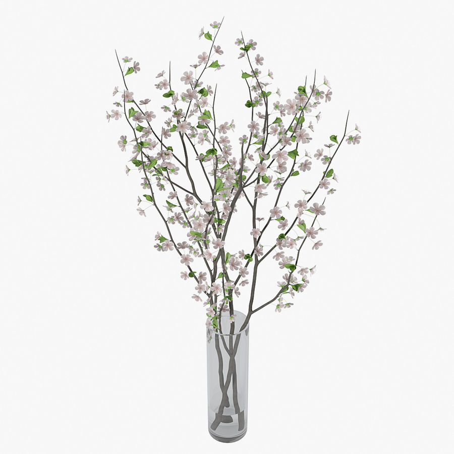 Cherry blossom 02 royalty-free 3d model - Preview no. 8
