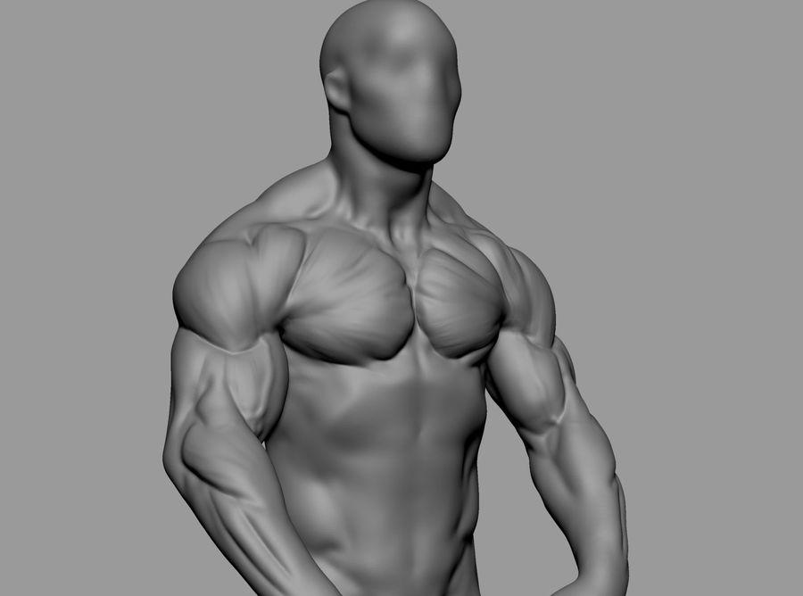 Male Torso Studies royalty-free 3d model - Preview no. 9