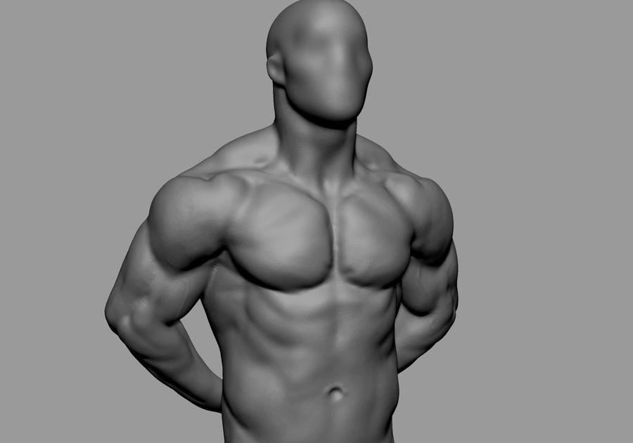 Male Torso Studies royalty-free 3d model - Preview no. 3