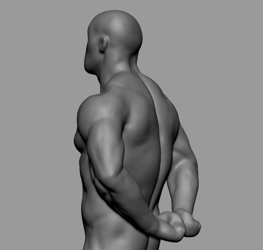 Male Torso Studies royalty-free 3d model - Preview no. 6